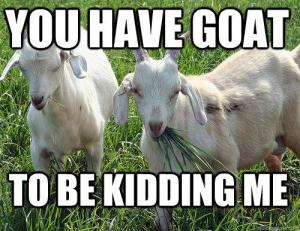 you have goat